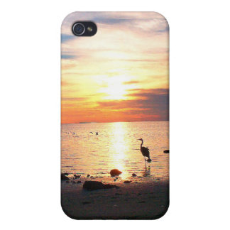 fashion, style and all about your unique style iPhone 4 cases