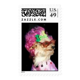 Fashionable Toy Mix Dog Postage