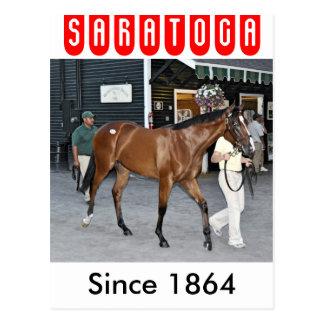 Fasig Tipton Select Sales at Saratoga Postcard