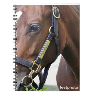 Fasig - Tipton Select Yearling Sales Notebook