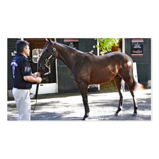 Fasig Tipton Yearling Auctions Business Card