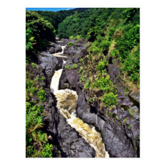 Fast River Waterfall Through Gorge Post Card