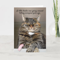 Fat Cat And Little Birdie Funny Birthday Card