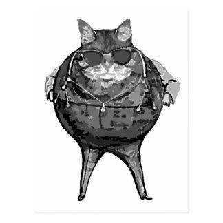 Fat Cat Banker Postcard