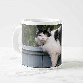 Fat Cat Large Coffee Mug