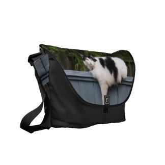 Fat Cat Messenger Bag