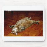 FAT CAT MOUSE PADS