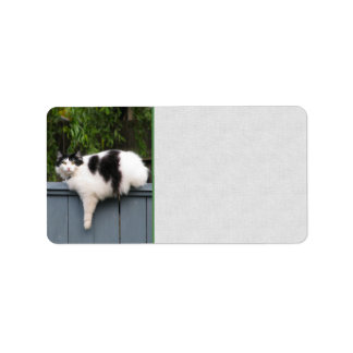 Fat Cat On Fence Address Label