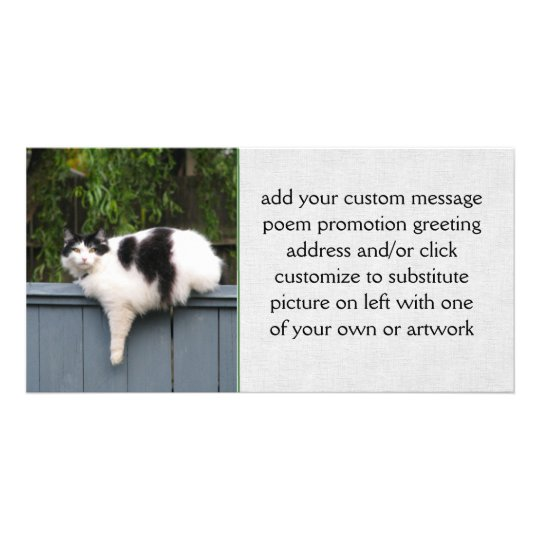 Fat Cat On Fence Card