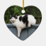 Fat Cat On Fence Christmas Ornaments