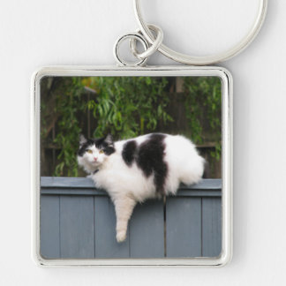 Fat Cat On Fence Silver-Colored Square Keychain