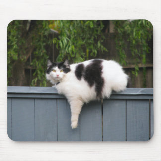 Fat Cat On Fence Mouse Pad