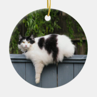 Fat Cat On Fence Double-Sided Ceramic Round Christmas Ornament