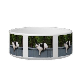 Fat Cat Cat Food Bowl