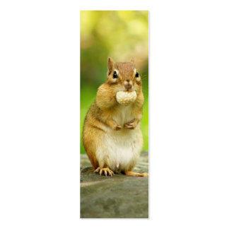Fat Chipmunk with Treat Mini Business Card