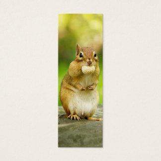 Fat Chipmunk with Treat Mini Business Card