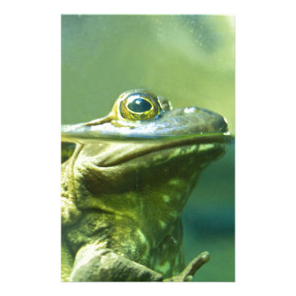 Fat Frog Stationery