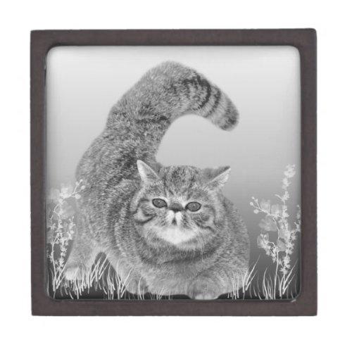 Fat Fuzzy Cat Jewelry Box