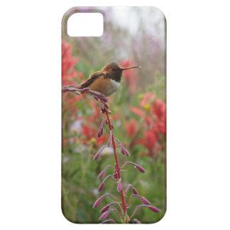 Fat little bird iPhone 5 cover