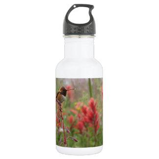 Fat little bird 18oz water bottle