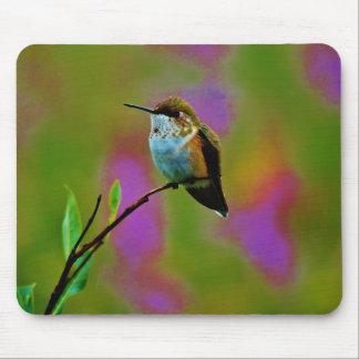 Fat little Hummingbird Mouse Pad