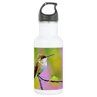 Fat little  Hummingbird 18oz Water Bottle