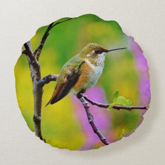 Fat little Hummingbird Round Pillow