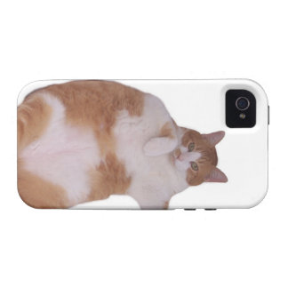 * FAT ORANGE CAT case iPhone 4 Casemate Vibe fun * Case-Mate iPhone 4 Covers