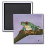 Fat Red Eyed Tree Frog Magnet