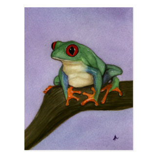 Fat Red Eyed Tree Frog Postcard