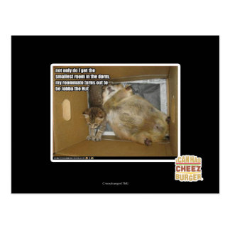 Fat roommate postcard