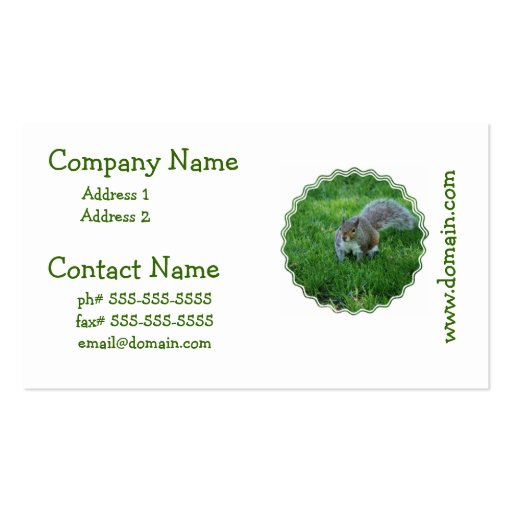 Fat Squirrel Business Cards