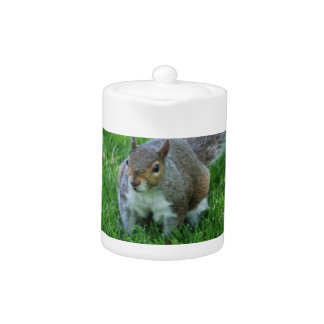 Fat Squirrel Teapot