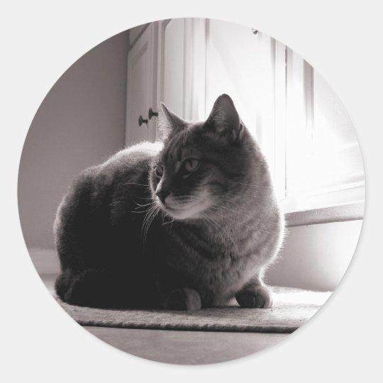 Fat Tabby Cat Classic Round Sticker