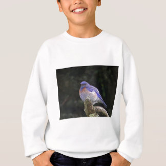 Fat Western Bluebird Shows White Feathers On Chest Sweatshirt