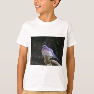 Fat Western Bluebird Shows White Feathers On Chest T-Shirt