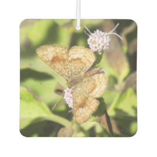 Fatal Metalmark Butterfly Air Freshener