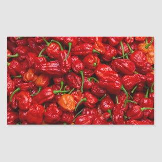 Fatalii's Chile Peppers 2 Rectangular Stickers