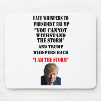 FATE WHISPERS TO PRESIDENT TRUMP MOUSE PAD