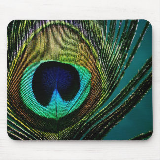 fatfatin Peacock Feather Photo Mousepad