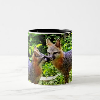 FATHER AND SON FOX COFFEE MUGS