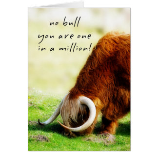 Father's Day Card - Scottish Longhorn Bull
