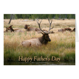 Father's Day Elk Card