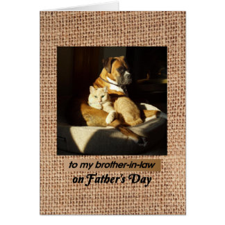 Father's Day for Brother-in-Law Boxer & Tabby Cat Card