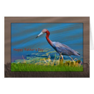 Father's Day, Little Blue Heron Wading Card