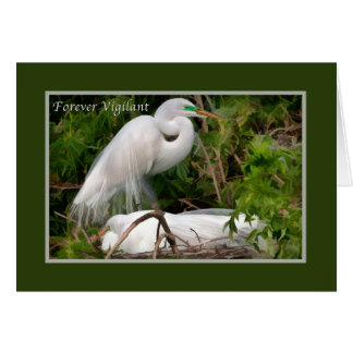 Father's Day, Nesting Great Egrets Cards