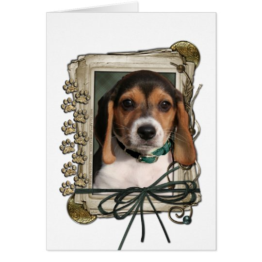Fathers Day - Stone Paws - Beagle Puppy Card