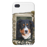 Fathers Day - Stone Paws - Bernese Mountain Dog iPhone 4/4S Cover
