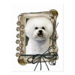 Fathers Day - Stone Paws - Bichon Frise Postcards