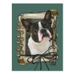 Fathers Day - Stone Paws - Boston Terrier Postcard